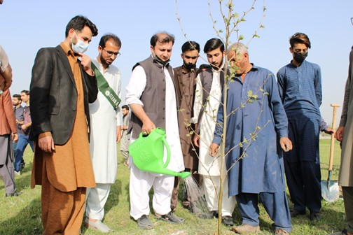 Tree Plantation Activity by UET Mardan at Chamtar (Bus Terminal)